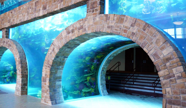 IBOC Aquarium - Dallas Structural Engineering Portfolio